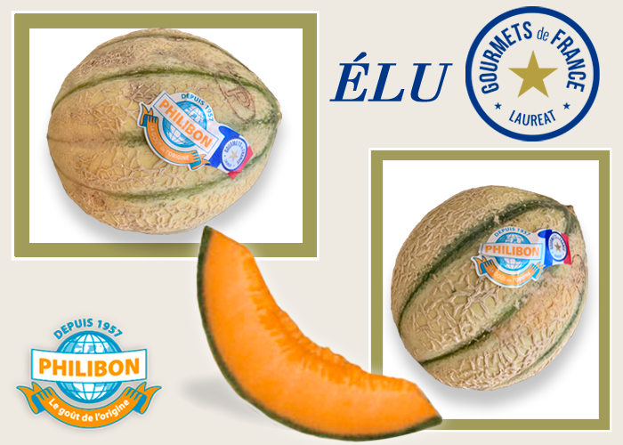Philibon melon